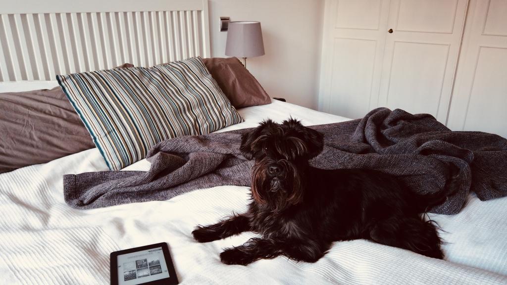 Kako spavati kvalitetnije – 7 stvari koje znam